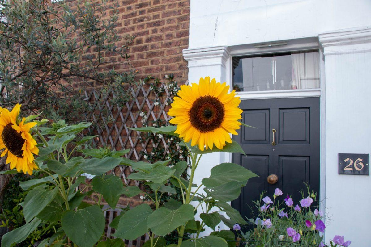 Hillgate St Notting Hill