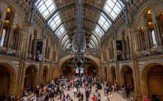 Natural History Museum London in de regen