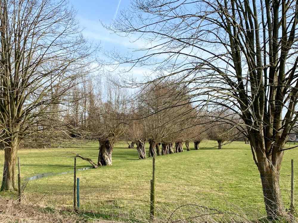 Brabantse Kouters Aalst
