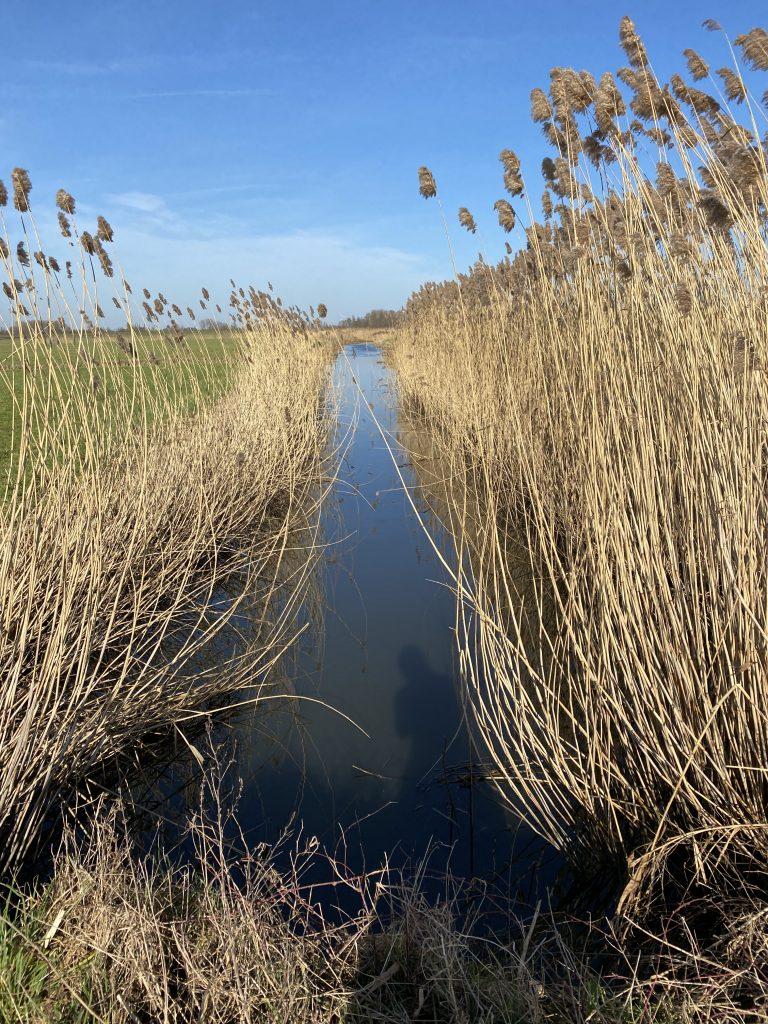 Waterhoek wandelroute