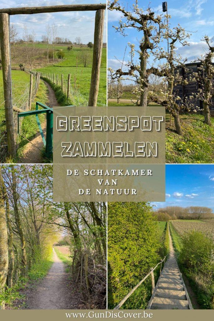 Greenspot Zammelen