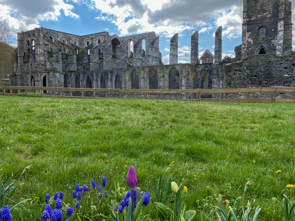 Tuin van de abdij