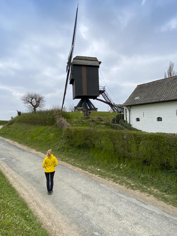 Windmolenwandeling